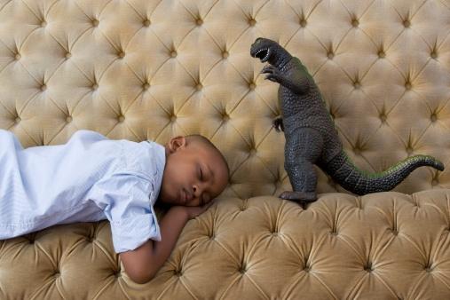 BocasVitis Dormir Sueño Descansar Noche
