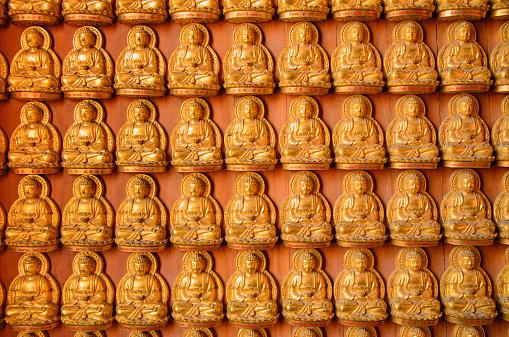 Diente De Buda