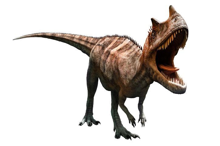 Dientes-dinosaurios