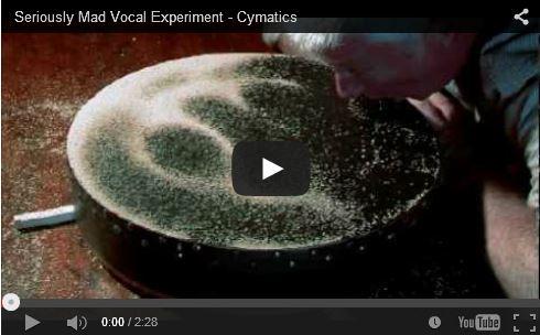 Video Voz + Fisica